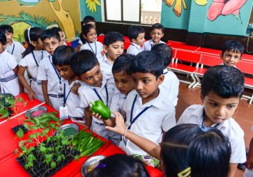 KG Experiential Learning – Vegetables