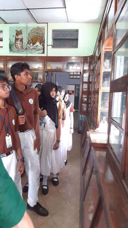 6.Zoological Museum