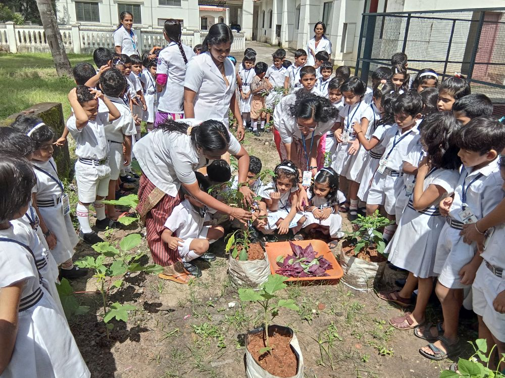Best-CBSE-School-In-Kerala-KG Experiential Learning - The Harvest